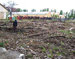 image-2012-04-20-12049944-70-tigani-sapat-fier-vechi-2